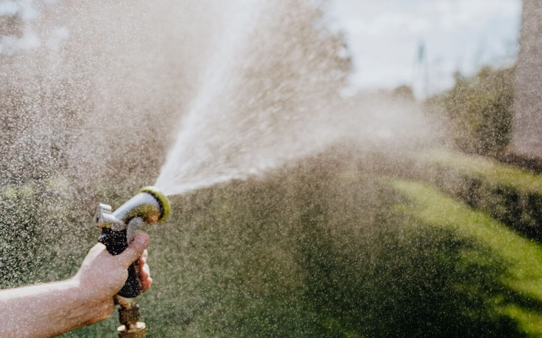 lawn watering tips hose water lawn hedges green growth good care